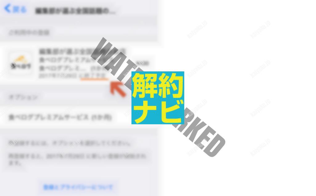 05_AppleID決済の登録状況