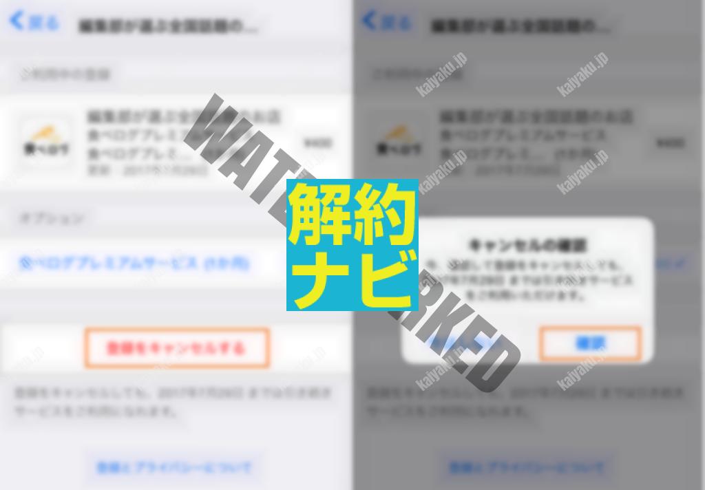 04_AppleID決済の登録状況